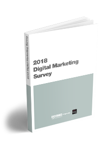 2018 Ditigal marketing survey